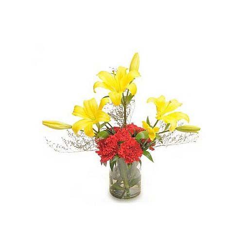 Carnations N Lilies