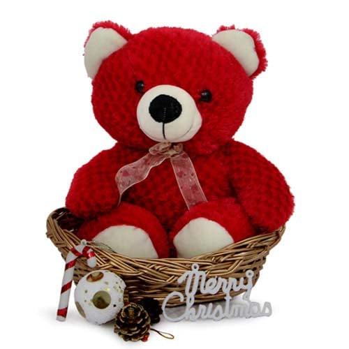 Teddy N Basket