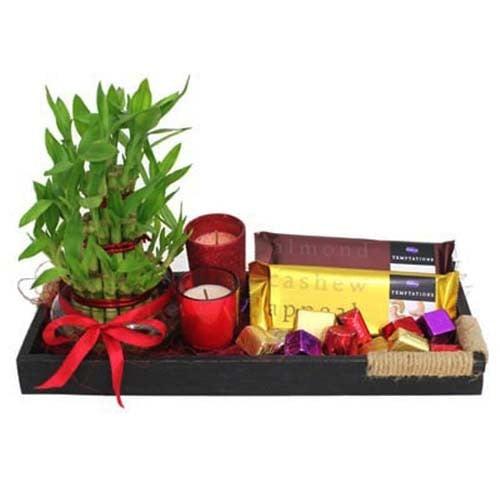 Lucky Bamboo N Chocolates Tray
