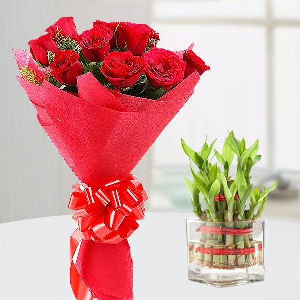 Lucky Bamboo Roses Emotion
