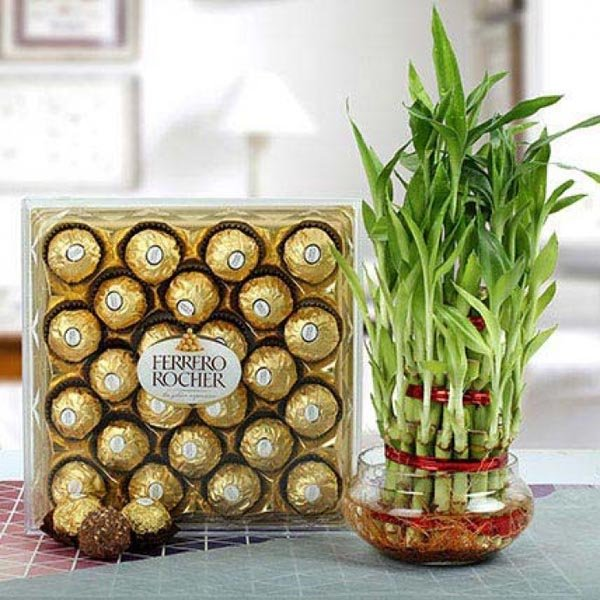 FERRERO ROCHER WITH THREE LAYER BAMBOO PLANT