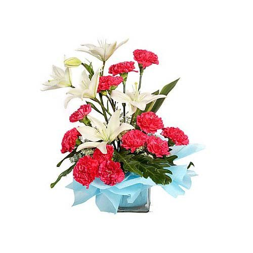 Mesmerizing Beauty Of Flowers