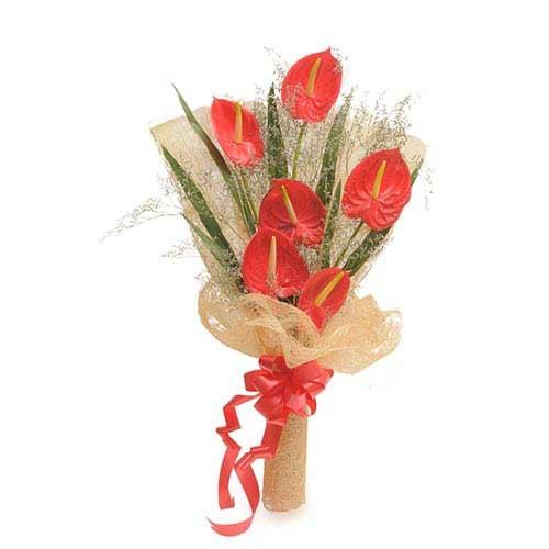 Red Anthuriums - Bouquet