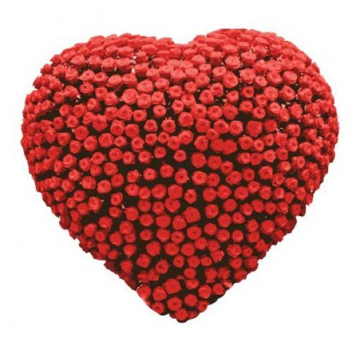 Heart With 500 Roses