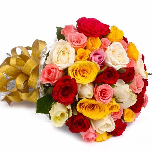 50  Colorful Roses