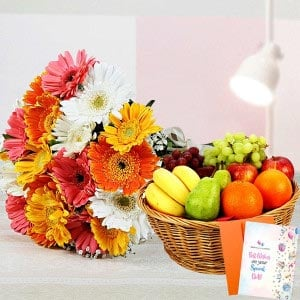 Mix Gerberas Fruity Combo