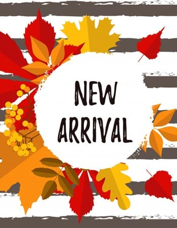 New Arrival Gifts online
